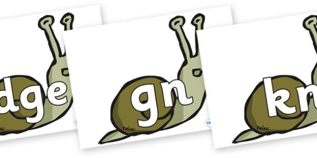 Silent Letters on Snails - Silent Letters, silent letter, letter blend, consonant, consonants, digraph, trigraph, A-Z letters, literacy, alphabet, letters, alternative sounds