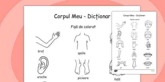 Corpul Meu, Fisa pentru Colorat - partile corpului , Romanian