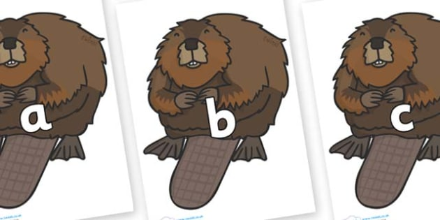 Phase 2 Phonemes on Beavers - Phonemes, phoneme, Phase 2, Phase two, Foundation, Literacy, Letters and Sounds, DfES, display