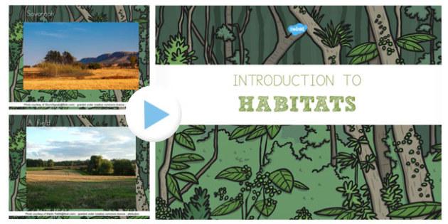 Introduction to Habitats PowerPoint - australia, habitats, introduction