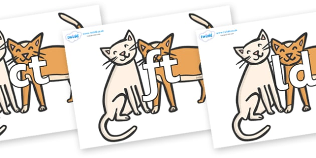Final Letter Blends on Cats - Final Letters, final letter, letter blend, letter blends, consonant, consonants, digraph, trigraph, literacy, alphabet, letters, foundation stage literacy