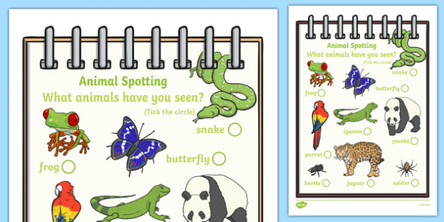Rainforest Explorer Role Play Animal Spotting Form - rainforest, explorer, role play, animal spotting, animals, form, what animals have you seen