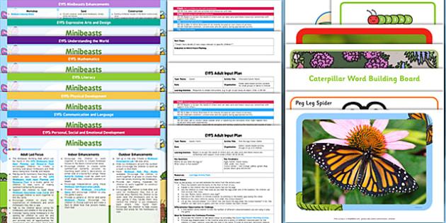 EYFS Minibeasts Bumper Planning Pack - planning, pack, eyfs