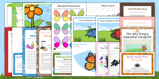 Childminder Minibeast Resource Pack - bugs creepy crawlies EYFS insects
