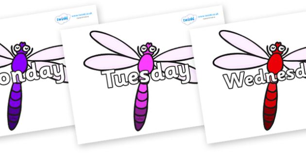 Days of the Week on Dragonflies - Days of the Week, Weeks poster, week, display, poster, frieze, Days, Day, Monday, Tuesday, Wednesday, Thursday, Friday, Saturday, Sunday