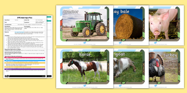 Farm Animal Masks EYFS Adult Input Plan and Resource Pack- plan, targets