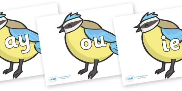 Phase 5 Phonemes on Birds - Phonemes, phoneme, Phase 5, Phase five, Foundation, Literacy, Letters and Sounds, DfES, display