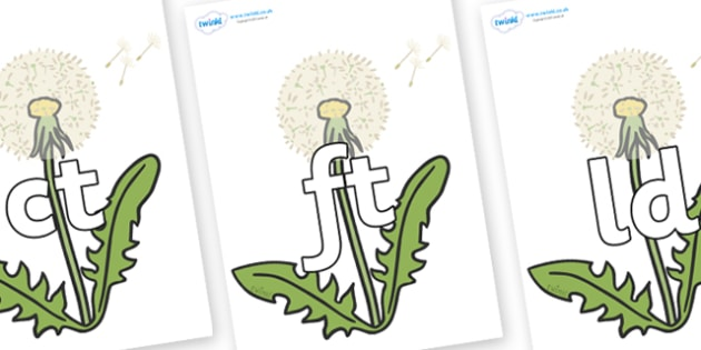 Final Letter Blends on Dandelion-Seeds - Final Letters, final letter, letter blend, letter blends, consonant, consonants, digraph, trigraph, literacy, alphabet, letters, foundation stage literacy