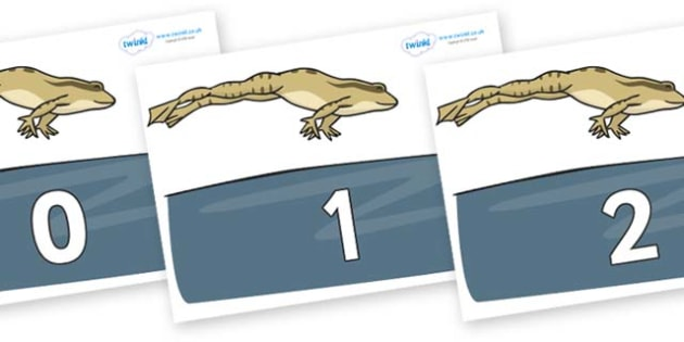 Numbers 0-50 on Frog - 0-50, foundation stage numeracy, Number recognition, Number flashcards, counting, number frieze, Display numbers, number posters