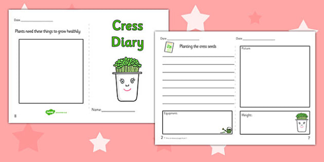 Growing Cress Diary Writing Frame - growing cress, diary, writing