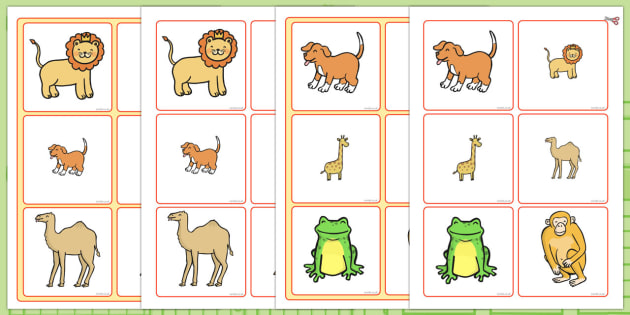 Matching Size Activity to Support Teaching on Dear Zoo - dear zoo, matching, matching activity, matching game, matching size, size activity, size, matching puzzle
