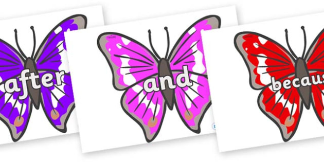 Connectives on Emperor Butterflies - Connectives, VCOP, connective resources, connectives display words, connective displays
