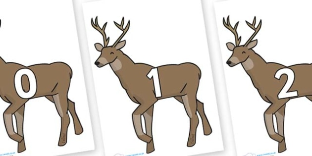 Numbers 0-50 on Stags - 0-50, foundation stage numeracy, Number recognition, Number flashcards, counting, number frieze, Display numbers, number posters