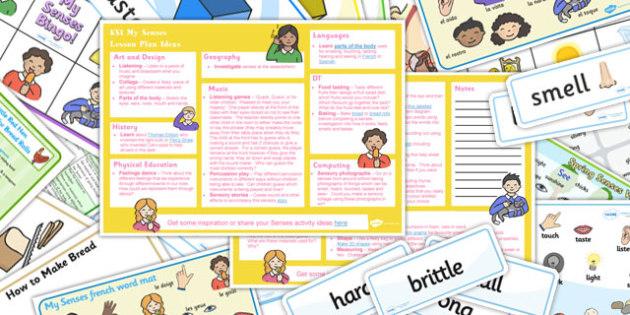 My Senses KS1 Lesson Plan Ideas and Resource Pack - ks1, plan