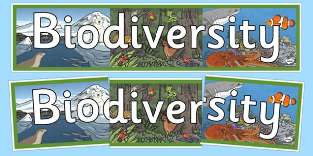 Biodiversity Display Banner - Biodiversity, Green schools, environment, display, banner, green flag, nature