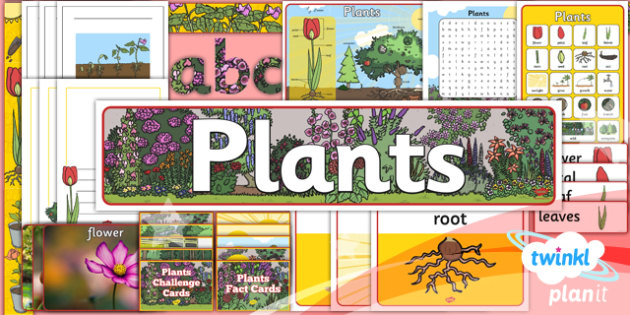 PlanIt - Science Year 1 - Plants Unit: Additional Resources