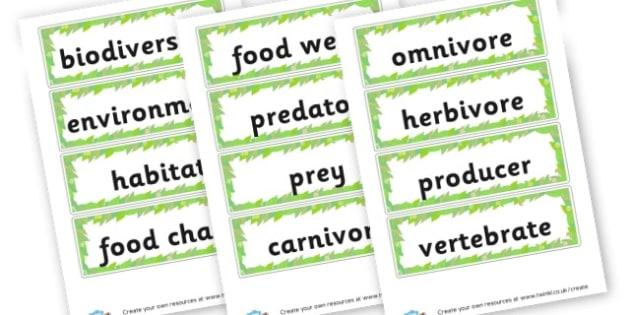 Habitats Vocabulary Cards