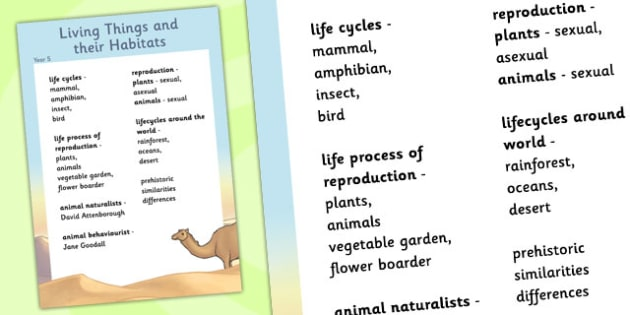 Year 5 Living Things their Habitats Scientific Vocabulary Poster
