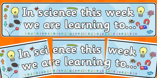 In Science this Week Working Wall Banner - science display, news