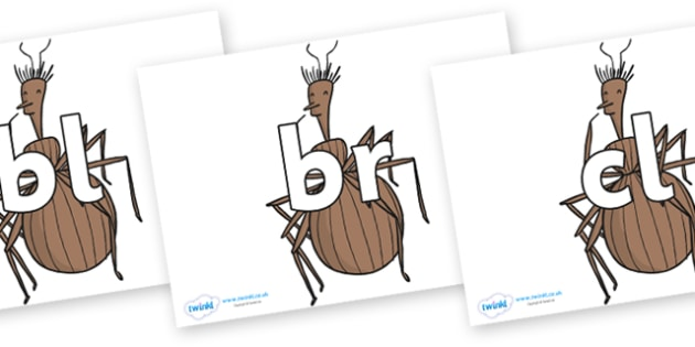 Initial Letter Blends on Miss Spider to Support Teaching on James and the Giant Peach - Initial Letters, initial letter, letter blend, letter blends, consonant, consonants, digraph, trigraph, literacy, alphabet, letters, foundation stage literacy
