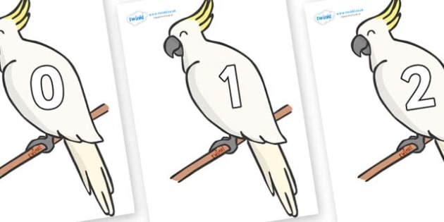 Numbers 0-50 on Cockatoos - 0-50, foundation stage numeracy, Number recognition, Number flashcards, counting, number frieze, Display numbers, number posters