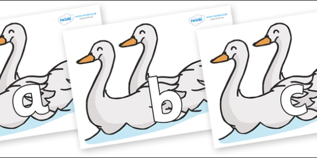 Phoneme Set on Swans - Phoneme set, phonemes, phoneme, Letters and Sounds, DfES, display, Phase 1, Phase 2, Phase 3, Phase 5, Foundation, Literacy
