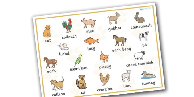 Scottish Gaelic Pets Word Mat - scottish gaelic, pets, pet, word mat, animal, language, languages, scotland, key words, gaels, celtic, literacy, aids, cats, dogs