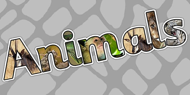 Animals Photo Display Lettering - animals, pets, letters, display