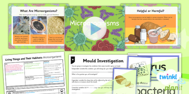 PlanIt - Science Year 6 - Living Things and Their Habitats Lesson 4: Microorganisms Lesson Pack - microbe, bacteria, mould