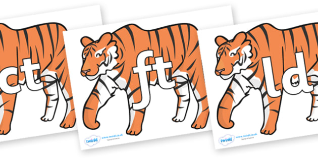 Final Letter Blends on Chinese New Year Tiger - Final Letters, final letter, letter blend, letter blends, consonant, consonants, digraph, trigraph, literacy, alphabet, letters, foundation stage literacy