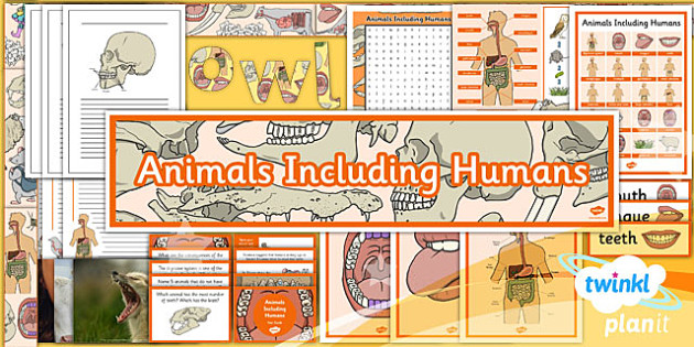 planit science year 4 animals including humans unit
