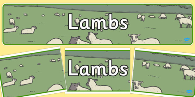 Lambs Display Banner - lambs, display banner, display, banner
