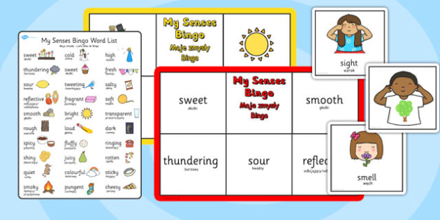 My Senses Bingo Polish Translation - polish, senses, bingo, game