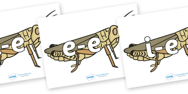 Modifying E Letters on Grasshoppers - Modifying E, letters, modify, Phase 5, Phase five, alternative spellings for phonemes, DfES letters and Sounds