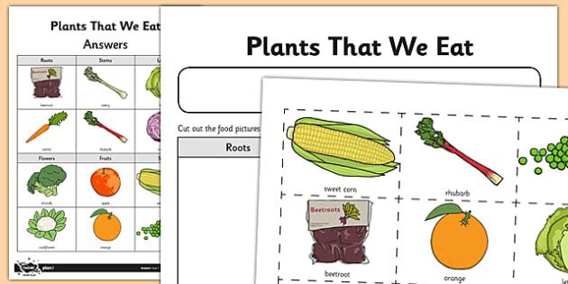 Activity Sheet Plant Parts We Eat - activity, sheet, plant, parts, worksheet