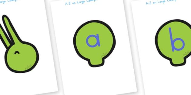 A Z Alphabet on Large Caterpillar - a-z, alphabet, minibeast