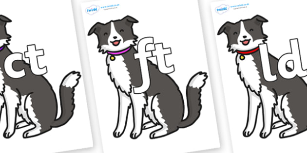 Final Letter Blends on Dog - Final Letters, final letter, letter blend, letter blends, consonant, consonants, digraph, trigraph, literacy, alphabet, letters, foundation stage literacy