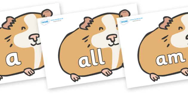 Foundation Stage 2 Keywords on Guinea Pigs - FS2, CLL, keywords, Communication language and literacy,  Display, Key words, high frequency words, foundation stage literacy, DfES Letters and Sounds, Letters and Sounds, spelling