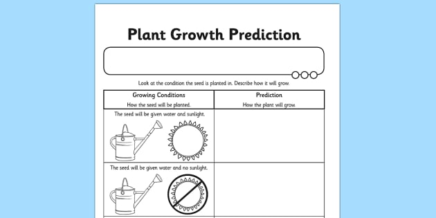 Plant Growth Prediction Worksheet - plants, living things, plant growth worksheet, plant growth prediction worksheet, predicting why plants grow, science
