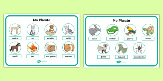 Mo Pheata Display Posters-Irish