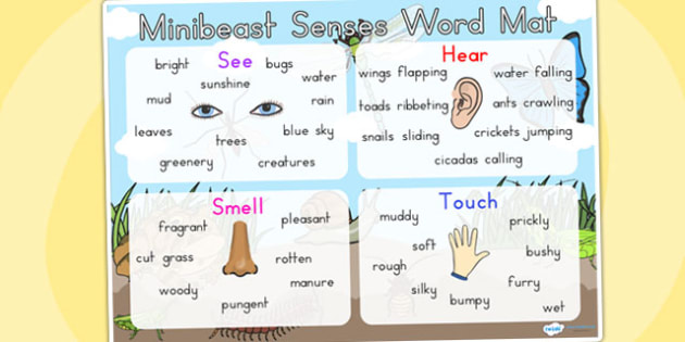 Minibeasts Senses Word Mat - words, keyword, keyword mat, sense