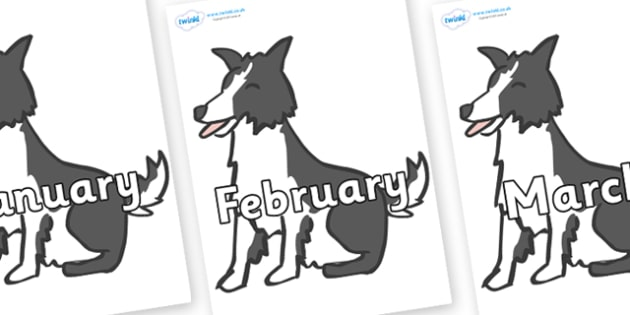Months of the Year on Sheep Dogs - Months of the Year, Months poster, Months display, display, poster, frieze, Months, month, January, February, March, April, May, June, July, August, September