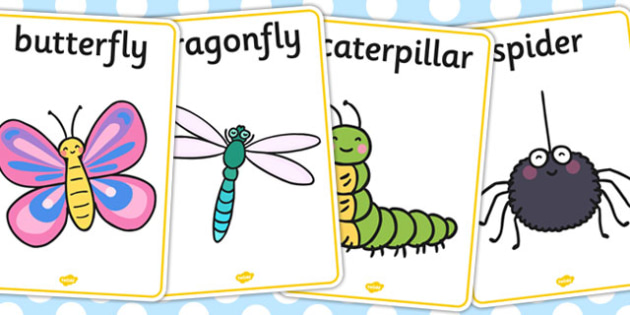 Minibeast Display Posters - Minibeast A4 Posters, Minibeast Posters, Minibeasts, Topic, Foundation stage, knowledge and understanding of the world, investigation, living things, snail, bee, caterpillar, ladybird, butterfly, spider