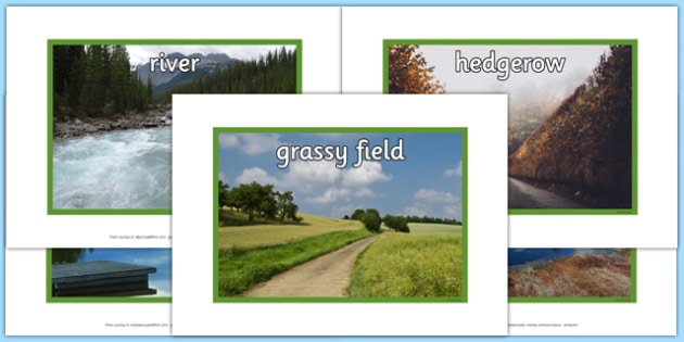 Biodiversity Habitat Photo Pack - photo, pack, habitat, pictures, display, biodiversity, green schools