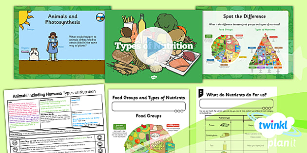 PlanIt - Science Year 3 - Animals Including Humans Lesson 1: Types of Nutrition