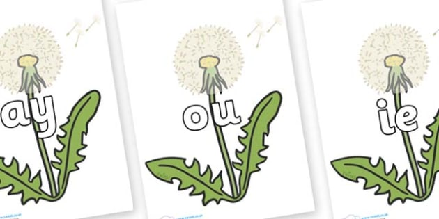 Phase 5 Phonemes on Dandelion Seeds - Phonemes, phoneme, Phase 5, Phase five, Foundation, Literacy, Letters and Sounds, DfES, display