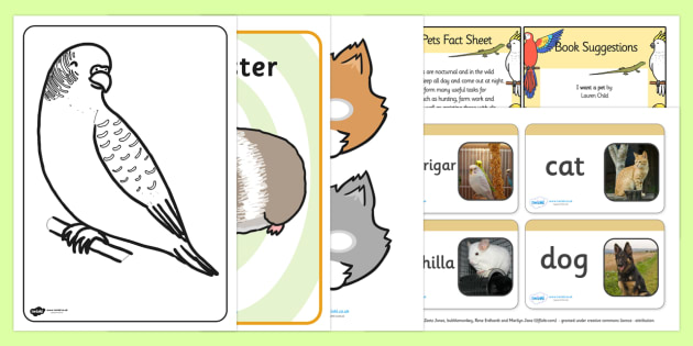 EYFS Pets Discovery Sack - EYFS, pets, resource pack, animals