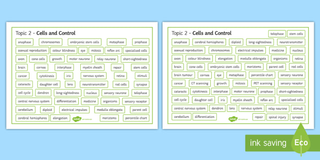 Edexcel Biology Cells and Control Differentiated Word Mat - Word Mat, edexcel, gcse, biology, mitosis, meiosis, cell division, nervous system, neurone, sensory,