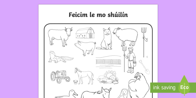 Ar an bhFeirm Feicim le mo shúilín Activity Sheet Gaeilge