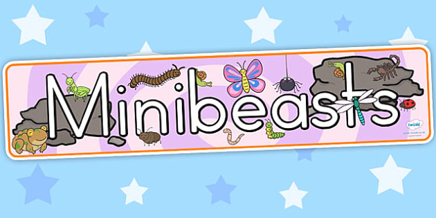 Minibeasts Cute Display Banner - insects, animal, header, display